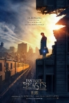 Fantastic Beasts and Where to Find Them 2D [12A]