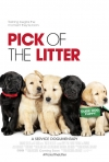 Pick Of The Litter [TBC]